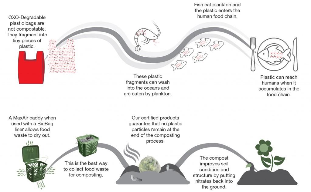 Are OXO-Biodegradable Plastics Environmentally Friendly?