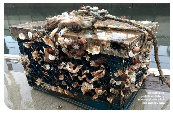 certificerede komposterbare bioposer nedbrydes helt i naturen