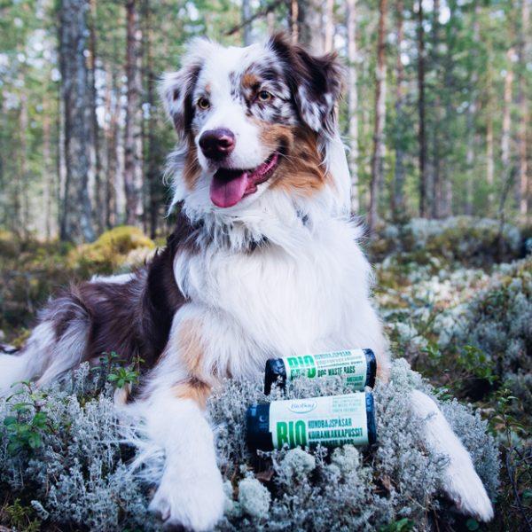 186043_BioBag-Bio hundeposer på rull - Medium - Banderoll - HUND