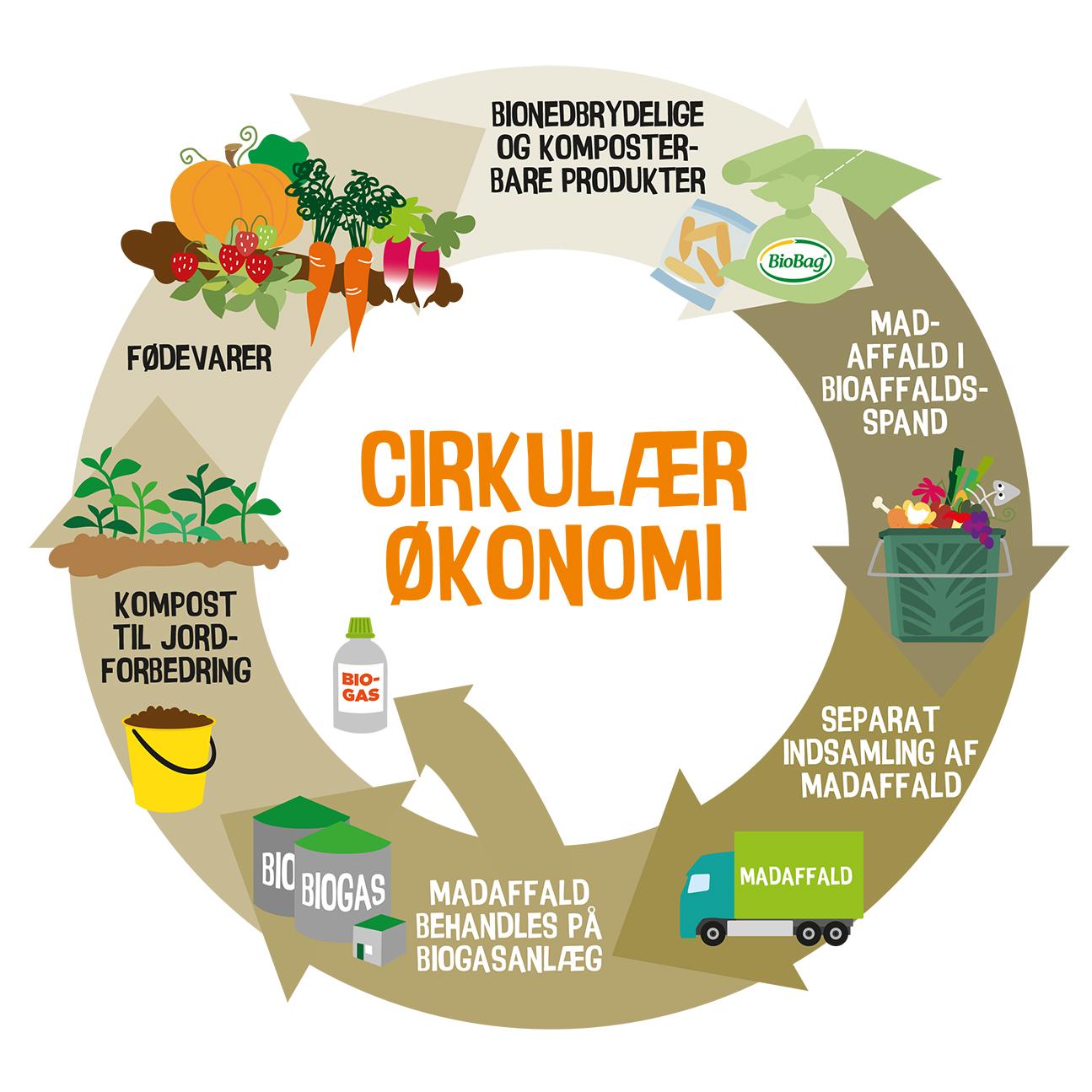 EU-rapport konkluderer at bioplast spiller en vigtig rolle i cirkulær økonomi